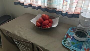 Finger Lakes Vacation Rental Fresh Tomatoes for All Our Guests