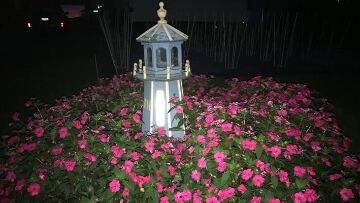 Finger Lakes Vacation Rental Sunpatiens at Night